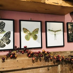 Frida stampe e quadri